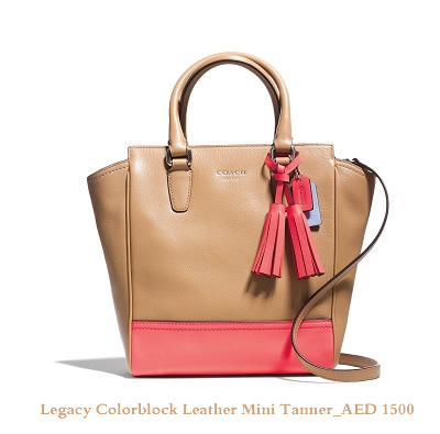 Legacy Colorblock Leather Mini Tanner_AED 1500