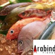 arabindfishes