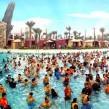 abu dhabi swimming
