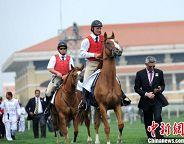 horseracing chengdu