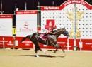 2001 CAPTAIN STEVE ( Bob Baffert- Jerry Bailey) wins Dubai World Cup, 24th of March-2001  (4)_meitu_1_meitu_2