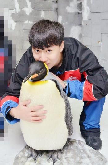 wangxin2