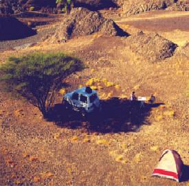Camping-leader_meitu_1