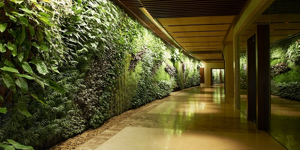 nEO_IMG_nEO_IMG_1.20 Green Wall