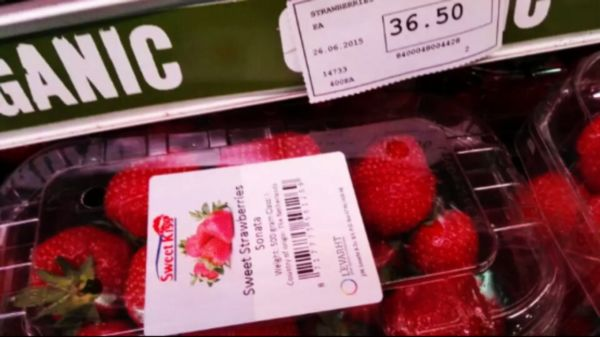 nEO_IMG_C超市良品 第二季 2944
